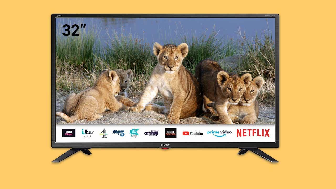 SHARP 1T C32BC3KH2FB 32 Inch Smart TV--Best under £200--Lion cubs