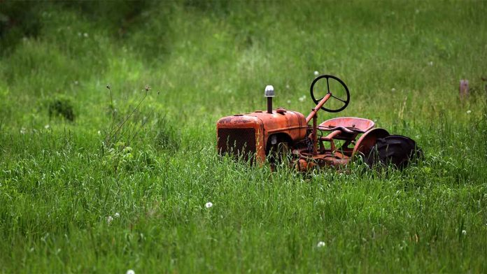 Do you need a new lawn mower? Recommended lawn mowers, corded and cordless for uk lawns and gardens. Old red tractor and overgrown field.